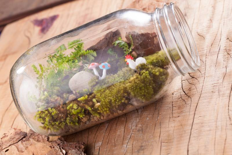 A terrarium garden scene in a clear bottle with moss, pebble, chicken and mushroom toy put on wooden table-Small Space Garden