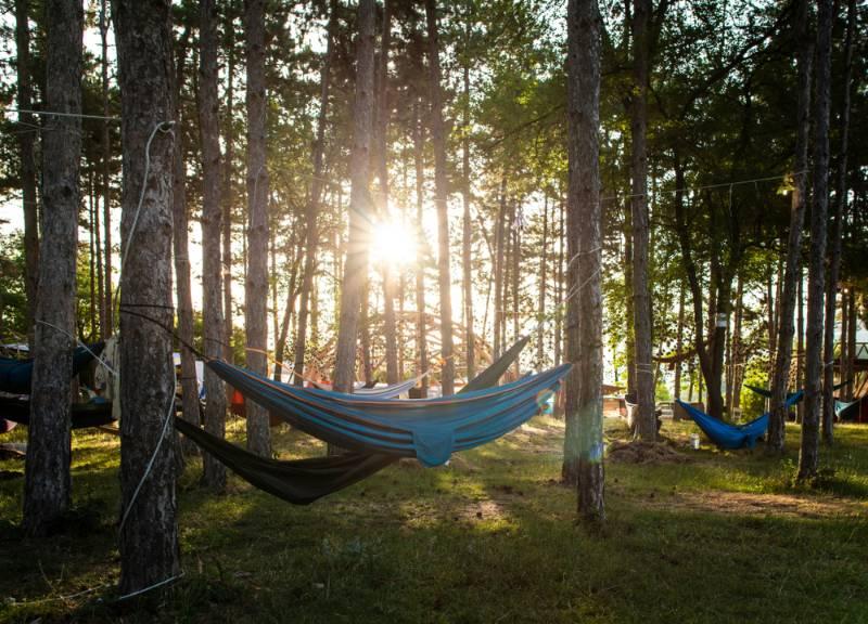 hammocks-on-trees-forest-sunshine-morning tent camping
