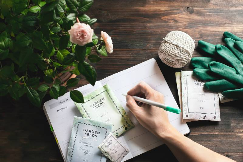 spring gardening planning, envelopes with seeds, gardening gloves against wooden table-Small Space Garden