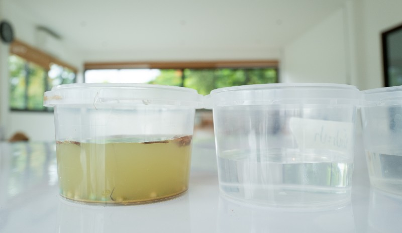DIY. Filter river water for leaning-Survival Skill sets