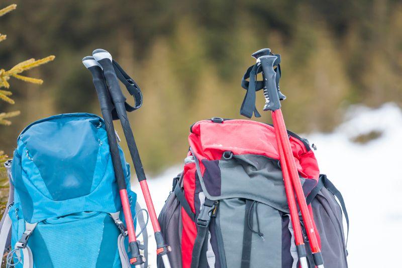 Backpack trekking poles   REI camping