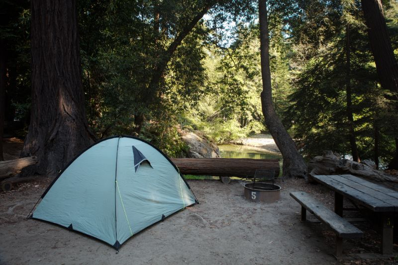Campsite | How to keep bears away from campsite