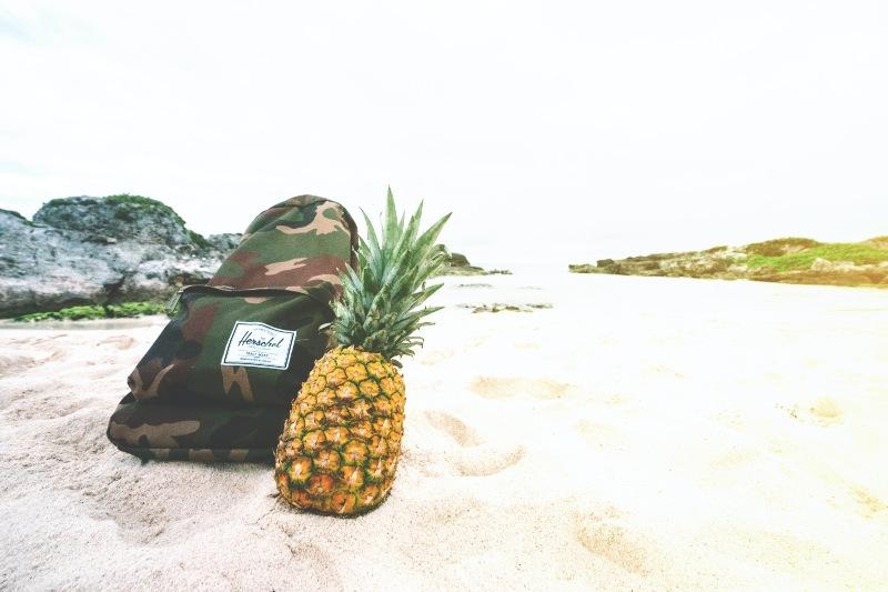 Pineapple Fruit Beside Backpack on White Sand | Camping Food Hacks