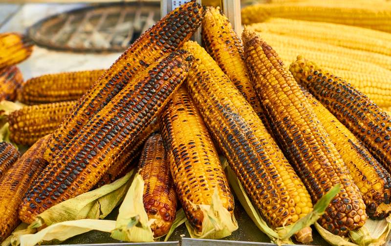 Selective Focus Photography of Grilled Corns | Camping Food Hacks