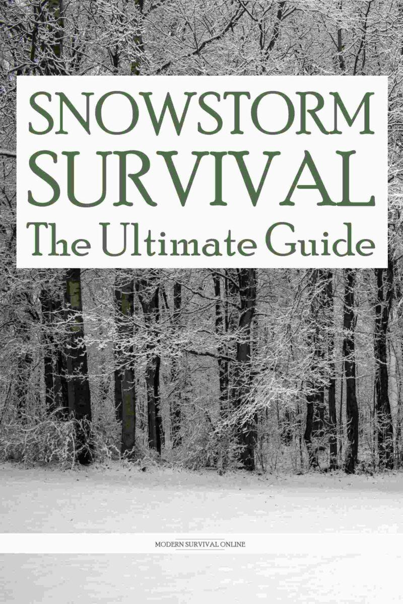 snowstorm survival pinterest