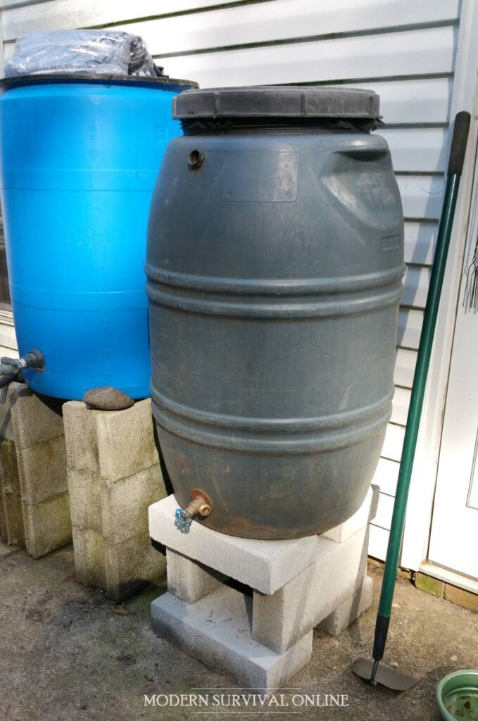 two rain barrels on cinder blocks for rainwater collection